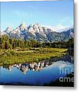 Mirrored Beauty Metal Print