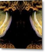 Mirrored Eyes Metal Print