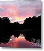 Mirrored In The Lake Metal Print