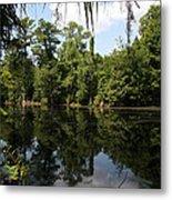 Mirrow Lake - Magnolia Gardens Metal Print
