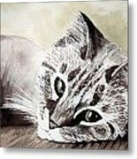 Miss Lilly Metal Print