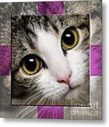 Miss Tilly The Gift 1 Metal Print