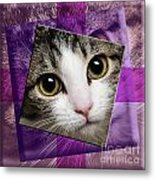 Miss Tilly The Gift 4 Metal Print