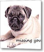 Missing You... Metal Print by Edward Fielding