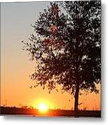 Mississippi Sunset 7 Metal Print