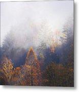 Mist In Mountains Metal Print by Dorothy Walker
