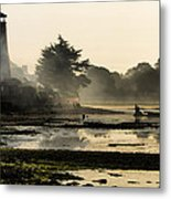 Mist On The Morning Tide Metal Print by Trevor Wintle