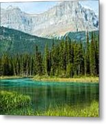 Mistaya River And Mountains Metal Print