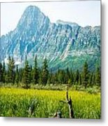 Mistaya River Valley And Mountain Range Metal Print