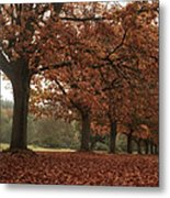 Misty Colours Of Autumn Metal Print