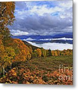 Misty Day In The Cairngorms II Metal Print