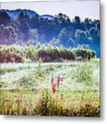 Misty Field In Blue Ridge Mountain Farmlands Metal Print
