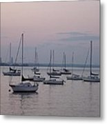 Misty Morning At The Bay Metal Print