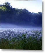 Misty Morning At Vally Forge Metal Print