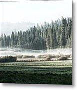 Misty Morning In Yosemite Metal Print