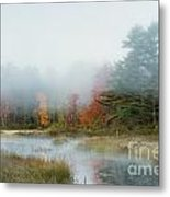 Misty Morning Maine Metal Print