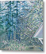 Misty Morning With Apple Blossoms And Redwoods Metal Print