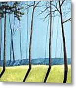 Misty Pines Metal Print
