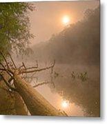 Misty Sun Metal Print
