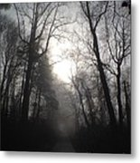 Misty Trail Metal Print by Stephanie  Varner