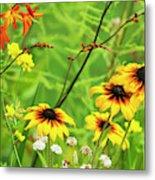 Mixed Flowers Bloom In A Garden Metal Print