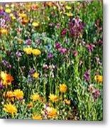 Mixed Wildflowers Metal Print