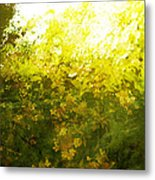 Painted Garden  Metal Print