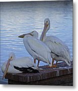 Moe Larry And Curly Metal Print