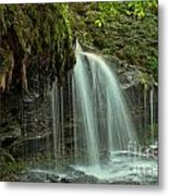 Mohawk Streams And Roots Metal Print