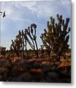 Mojave Desert Joshua Tree With Ravens Metal Print