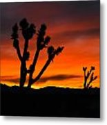 Mojave Morning Metal Print