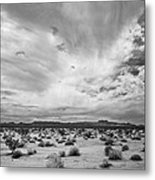 Mojave National Preserve Metal Print