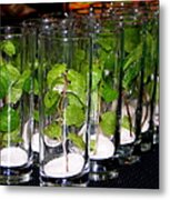 Mojitos In The Making Metal Print
