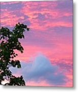 Momentary Magnificence Metal Print