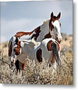 Momma And Baby In The Wild Metal Print