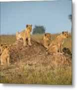 Mom's Coming Back - Dinner Is Almost Here. Metal Print