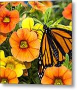 Monarch Among The Flowers Metal Print