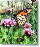Monarch Butterfly On Pink Lantana Metal Print