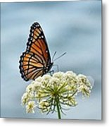 Monarch Butterfly On River Metal Print