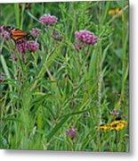 Monarch In The Wildflowers Metal Print
