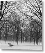 Monarch Park Ground Fog Metal Print