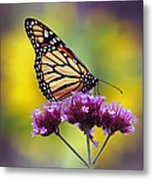 Monarch With Sunflower Metal Print