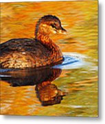 Monet Grebe Metal Print
