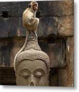 Monkey Sitting Perched On Buddha Head Metal Print