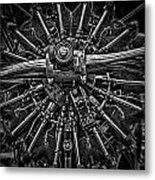 Mono Radial Metal Print
