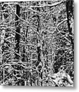 Monochrome Winter Wilderness Metal Print