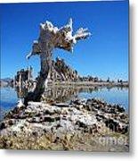 Mono Lake 5709 Metal Print