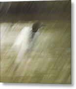 Monsoon Loon Metal Print