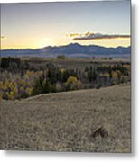 Montana Back Country Metal Print by Dana Moyer