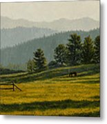 Montana Morning Metal Print by Crista Forest
